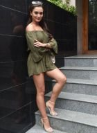 picture Indian ESCORTS HOTEL (independent)