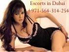 Escorts in Dubai, photos from the escorts site SexoDubai.com