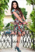 Escorts in Dubai, height: 5, weight: 0